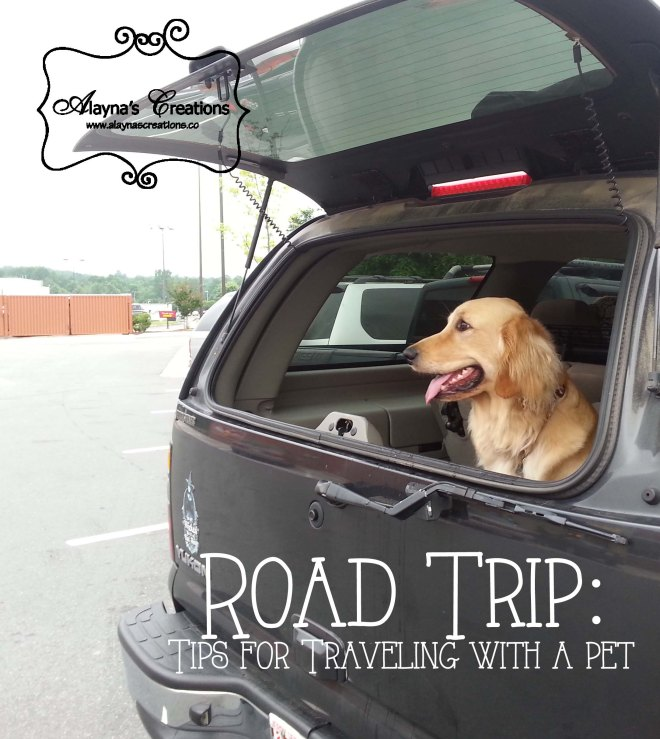Road Trip Tips for Traveling with a Pet