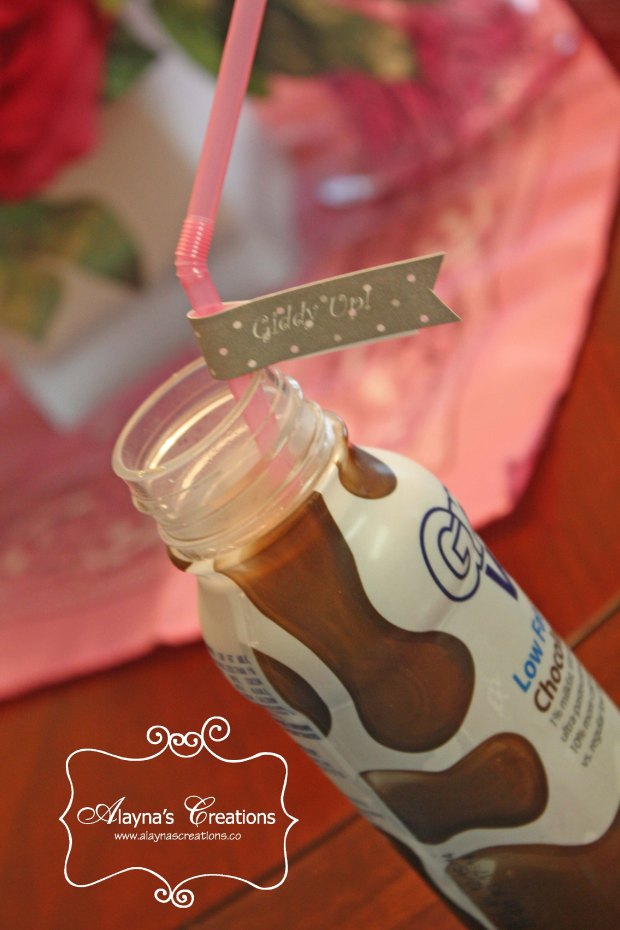 Horse Birthday Party Chocolate Milk with Giddy Up Straws