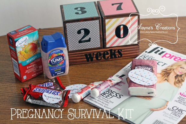 Pregnancy Survival Kit Gift Basket Idea a great way to show your excitement for a friend or family member