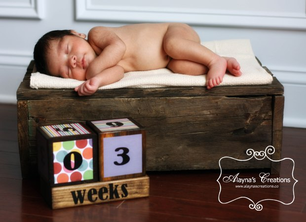 Pregnancy and New Baby Countdown Blocks Photo Prop