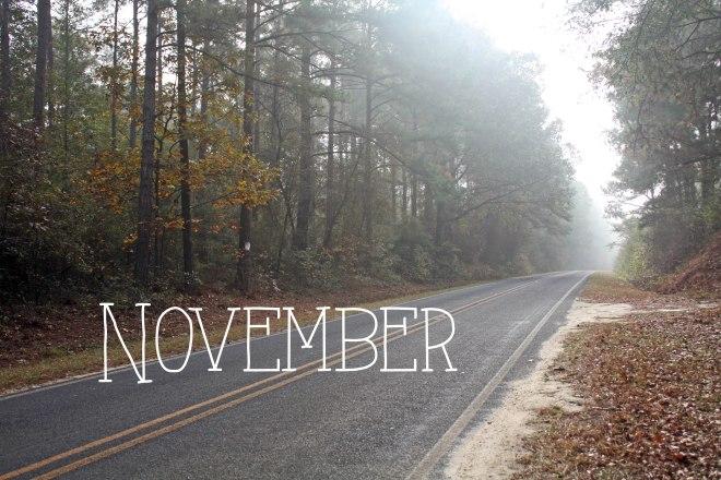 November Fall leaves along the road change in seasons landscape