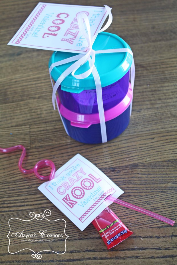Crazy Kool Valentines  Cool gift ideas for classmates and teachers