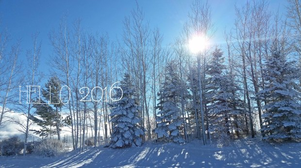 hELLO 2016 Snow and sun flair behind the trees AlaynasCreations