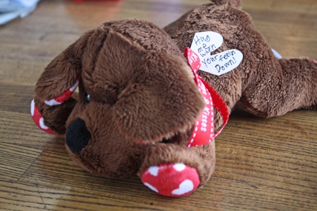 Care Package Idea send him or her a cuddly stuffed animal that has been spritzed with perfume or cologne for your loved one to cuddle when they miss you